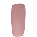 ALX Gel Polish No 209