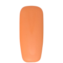 ALX Gel Polish No 232